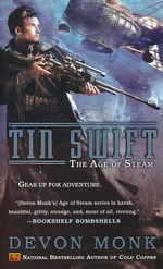 Age of Steam nr. 2: Tin Swift (Monk, Devon)