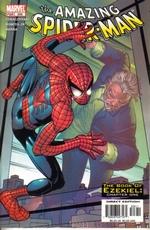 Spider-Man, The Amazing, vol. 2 nr. 506.