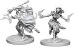 D&D NOLZURS MARVELOUS UNPAINTED MINIS: Female Tiefling Warlock (2)
