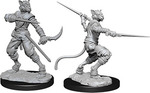 D&D NOLZURS MARVELOUS UNPAINTED MINIS: Male Tabaxi Rogue (2)