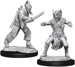 D&D NOLZURS MARVELOUS UNPAINTED MINIS: Male Human Monk (2)