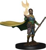 D&D ICONS OF THE REALM PREMIUM FIGURES: Elf Female Druid (1)
