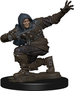 PATHFINDER PREMIUM PAINTED: Human Rogue Male (1)