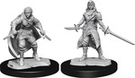D&D NOLZURS MARVELOUS UNPAINTED MINIS: Half-Elf Rogue Female (Wave 14) (2)