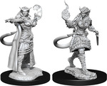 D&D NOLZURS MARVELOUS UNPAINTED MINIS: Tiefling Sorcerer Female (2)